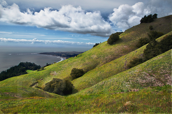 Mt. Tam Northward